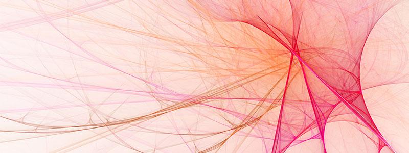 Die Geheimkraft der Herzneuronen